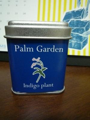 Indigo_plant
